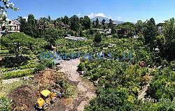 Peirano Vivai | Progettazioni giardini