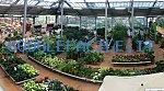 Centro Di Giardinaggio San Fruttuoso   Opere di giardinaggio