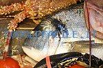 La Selva Pesca | ingrosso pesce