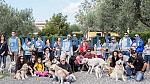Hidog | Educazione, Pensione e toelettatura cani