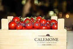 Calemone | Azienda Agricola Biologica