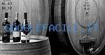Azienda Agricola Lanciola | Azienda Vino Olio - Agriturismo