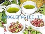 Antiche Tradizioni di Sardegna | Prodotti tipici Locali Olio di lentisco