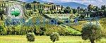 Cooperativa Monte Cetona   Giardinaggio e cura del verde