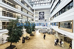 Douglas-HQ-Dusseldorf-Atrium_grid.jpg